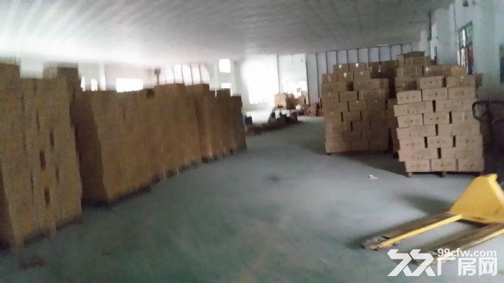 杨屋1300M简易厂房出租-图(2)