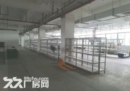 南沙金州1500平厂房出租丨靠高速近-图(5)