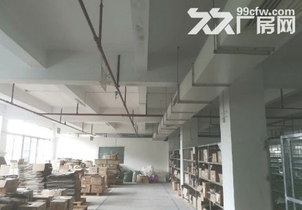 南沙金州1000平厂房出租丨可办环评-图(2)