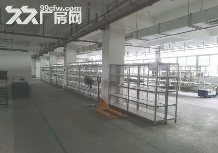 南沙金州1000平厂房出租丨可办环评-图(6)