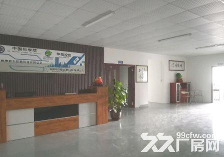 南沙金州1000平厂房出租丨可办环评-图(7)