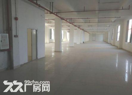 白云竹料5800平米厂房出租丨结实耐用-图(2)