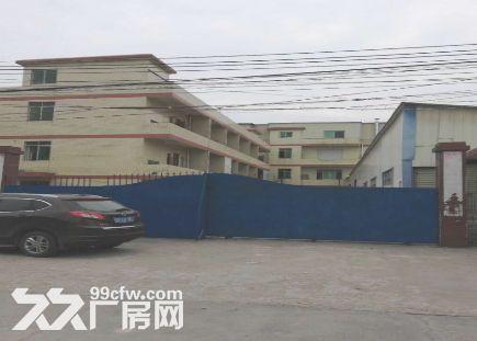 白云竹料5800平米厂房出租丨结实耐用-图(1)