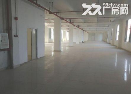 白云竹料5300平米厂房出租丨独门独院-图(1)