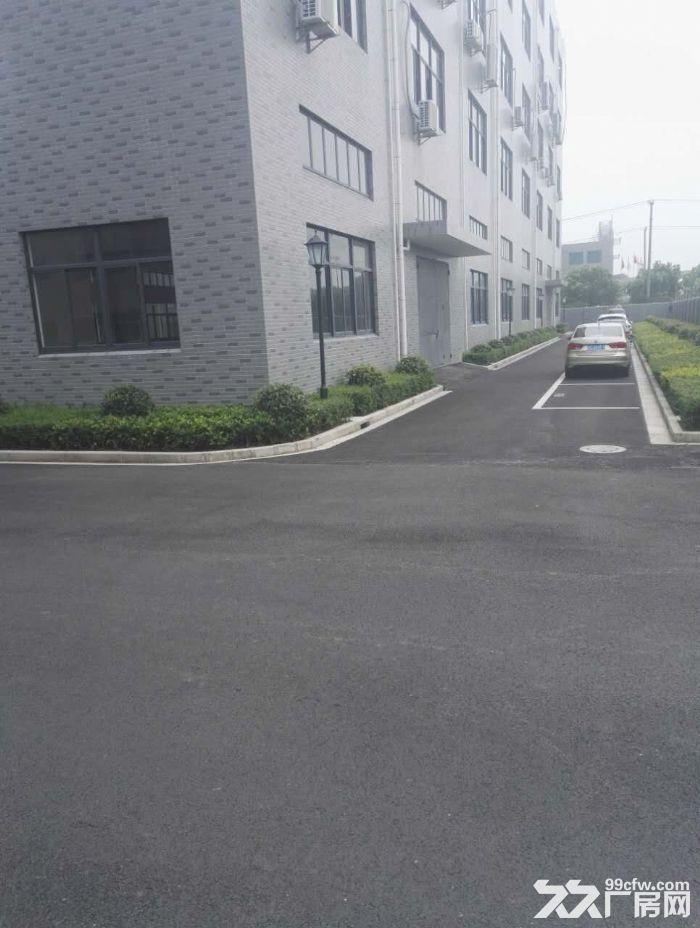 车墩工业区一手房东1400平米楼上厂房-图(1)