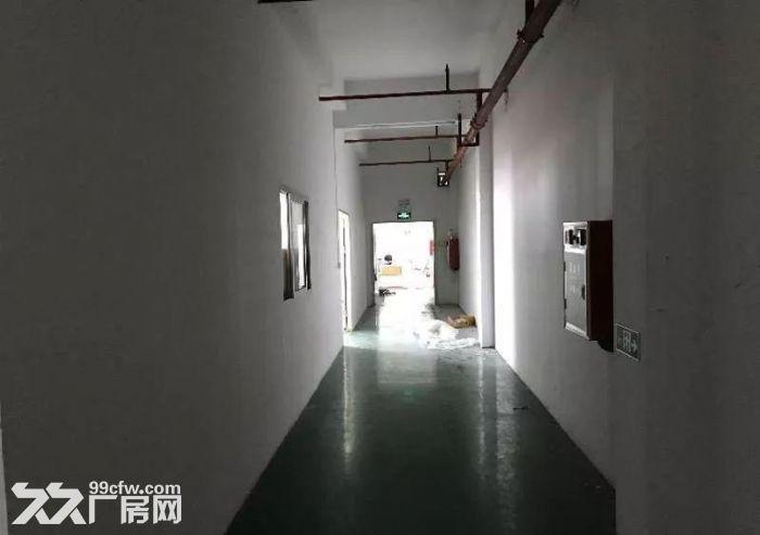 茶山塘角楼上厂房550平米精装修厂房-图(2)