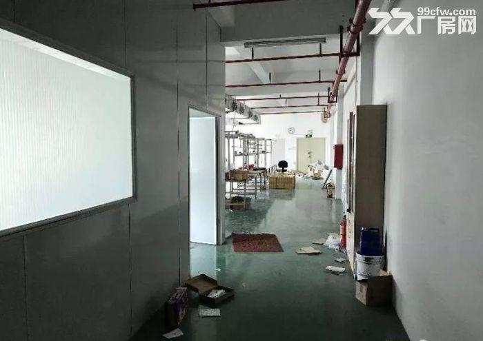 茶山塘角楼上厂房550平米精装修厂房-图(3)