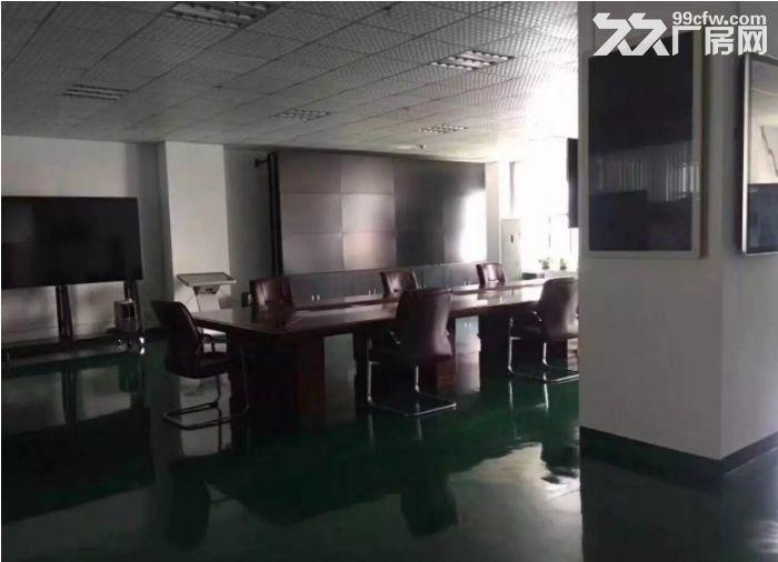 茶山博头新出楼上原房东900平米,带精装修厂房-图(2)