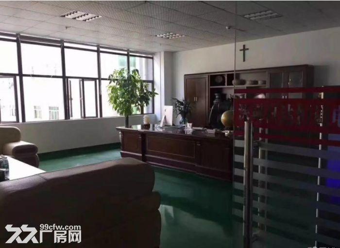 茶山博头新出楼上原房东900平米,带精装修厂房-图(3)