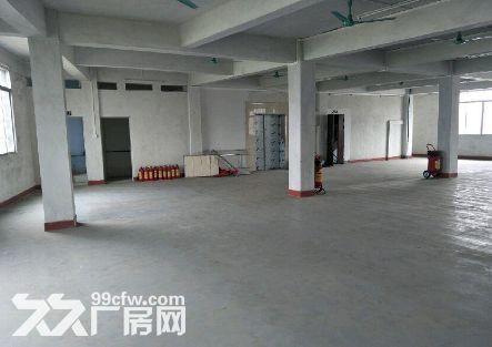 白云石湖村1900平米厂房出租丨价格可议-图(1)