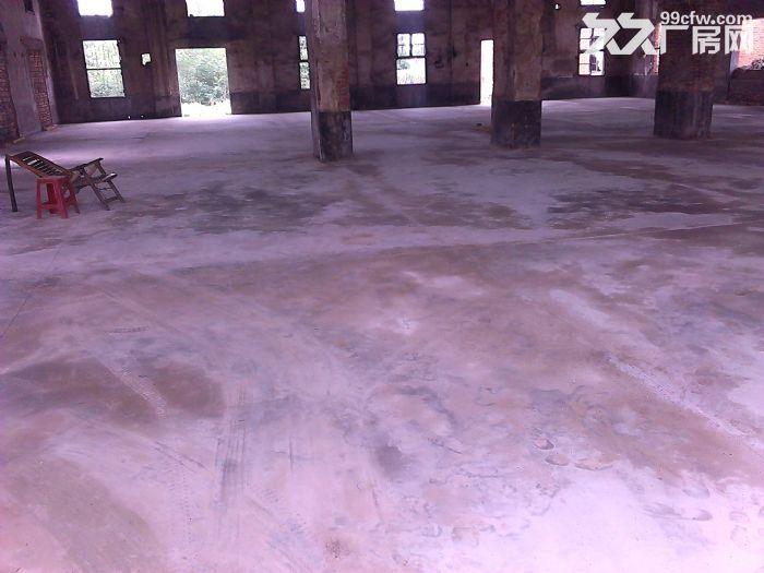 汉川马口厂房出租,分租,可当仓库,优惠,水电齐全,交通方便-图(5)