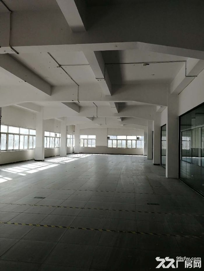 近松江城区500底楼仓库出租-图(1)