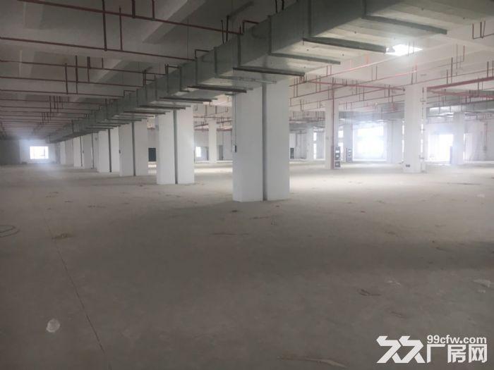 新区硕放长江东路附近16000平双层厂房出租-图(2)
