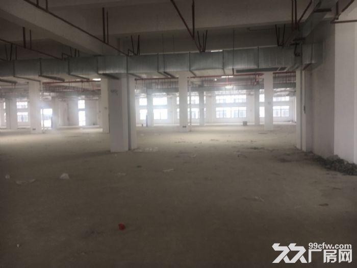 新区硕放长江东路附近16000平双层厂房出租-图(4)