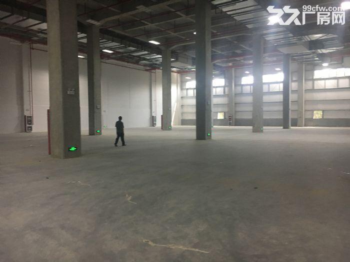 新区梅村张公路附近大型物流园30000平高标仓库招租-图(4)