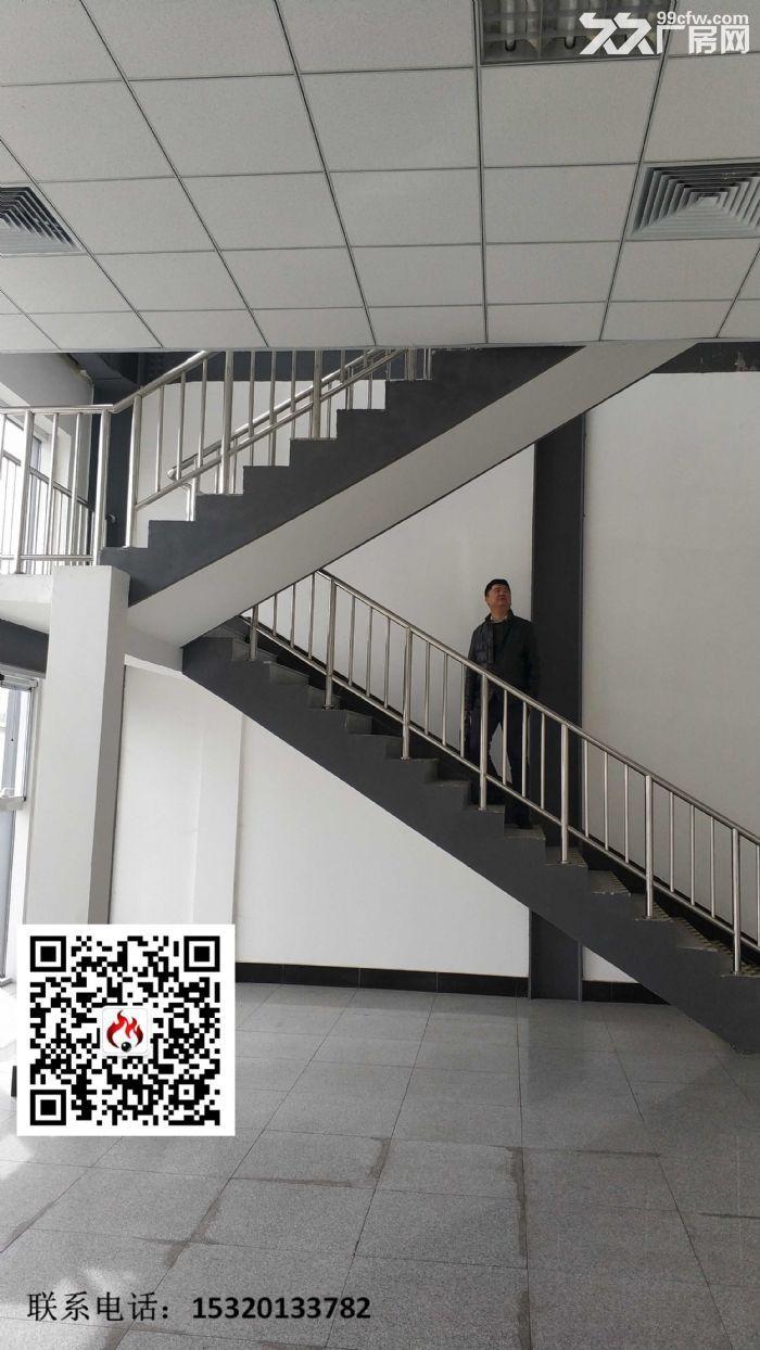 天津武清开发区3000平米独栋厂房出租-图(5)