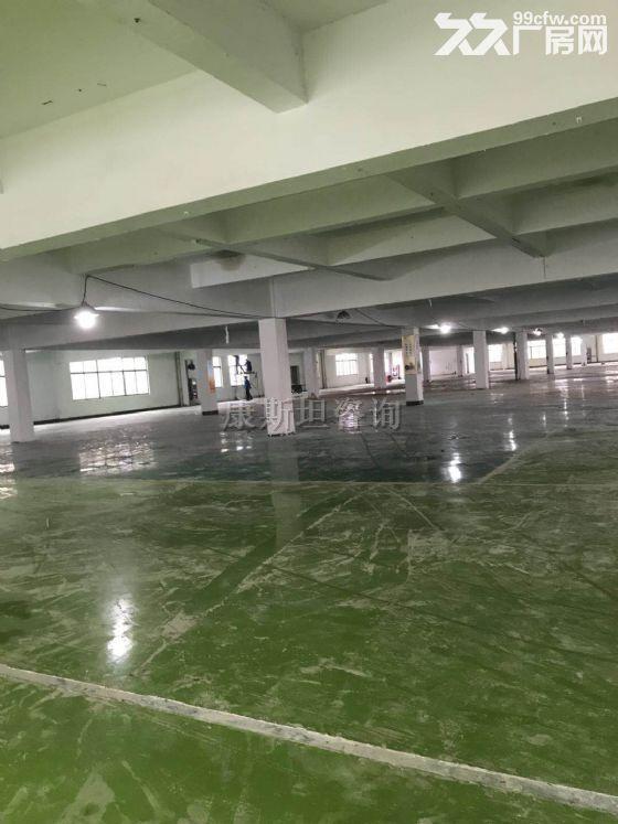 Z新区汉江路附近园区有3500平厂房出租-图(1)