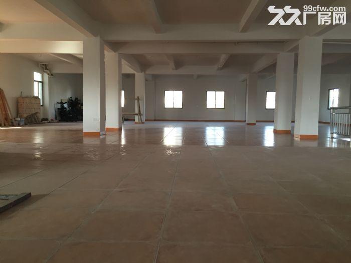 海沧东孚独门独院框架标准厂房仓库出租-图(4)