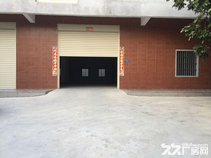 海沧东孚独门独院框架标准厂房仓库出租-图(6)