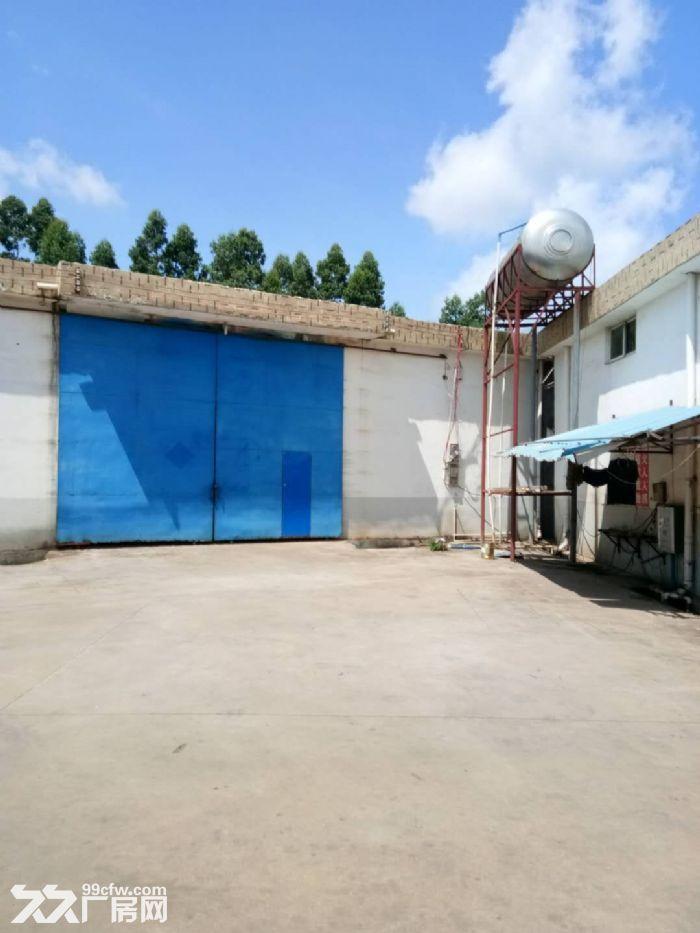 出租海榆中线199号金鹿工业区旁6千平米通水电独门独院大厂房仓库-图(4)