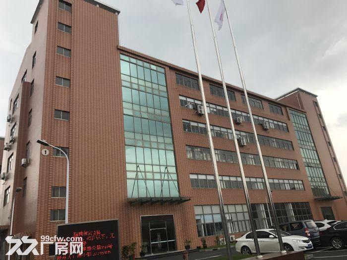 松江一楼厂房招租880平层高4.5米配电大证件齐全可环评-图(2)