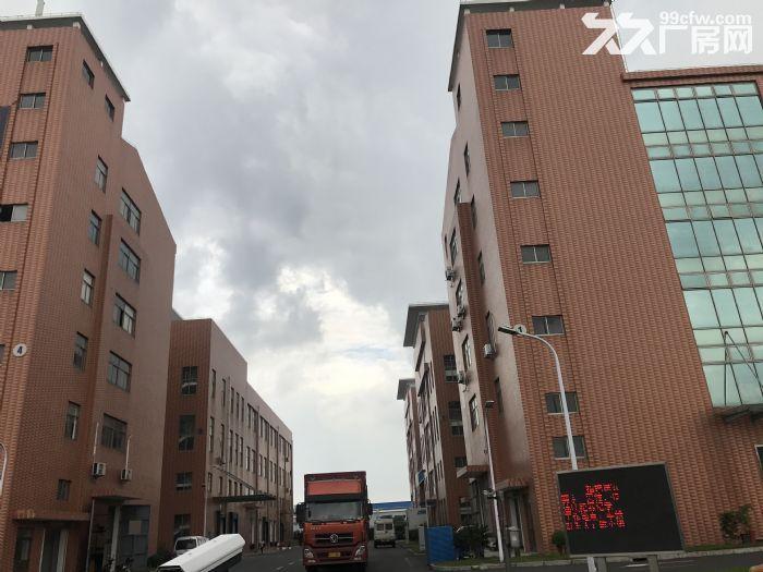 松江一楼厂房招租880平层高4.5米配电大证件齐全可环评-图(5)