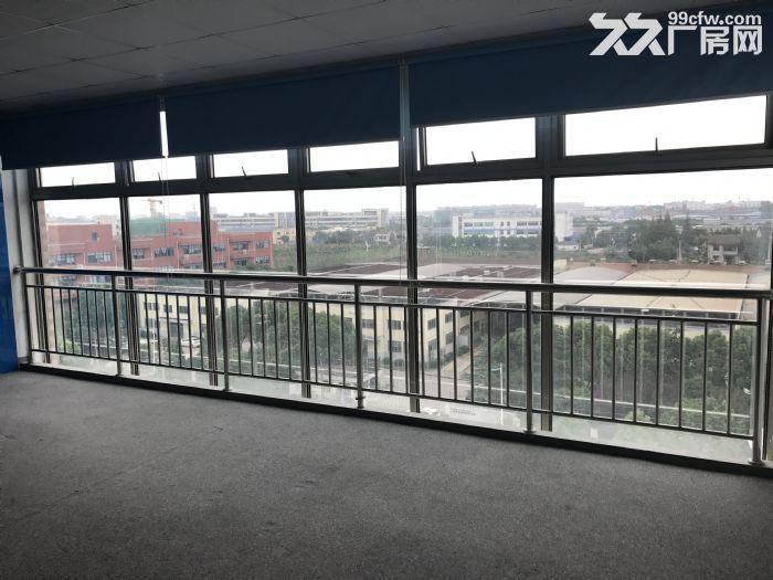 松江一楼厂房招租880平层高4.5米配电大证件齐全可环评-图(6)