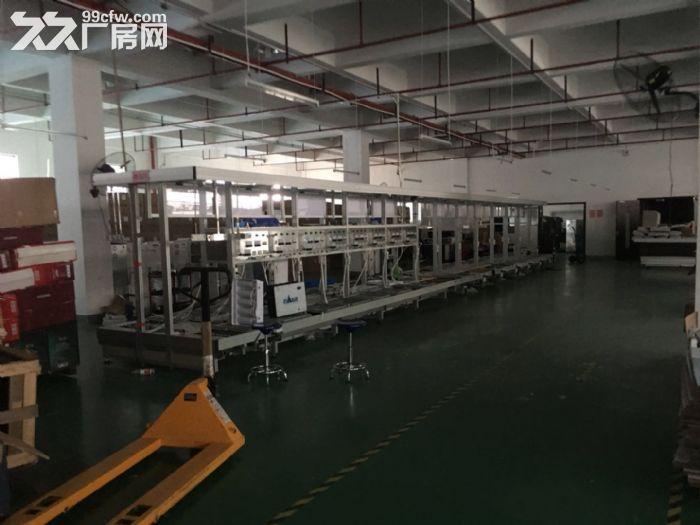 松江一楼厂房招租880平层高4.5米配电大证件齐全可环评-图(8)