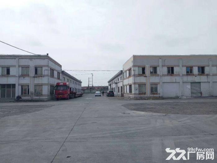嘉定工业区标准单层厂房2600平,高度9米-图(3)