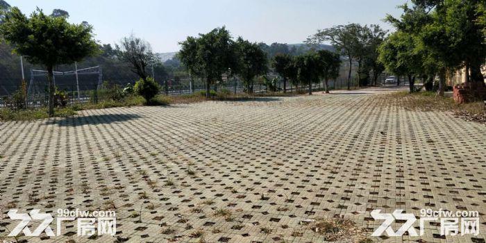 5000方农庄带装修出租,水免费。无转让费-图(5)