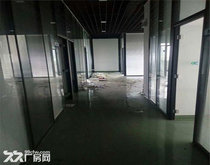 侨德高新科技园2960平米厂房出租-图(3)