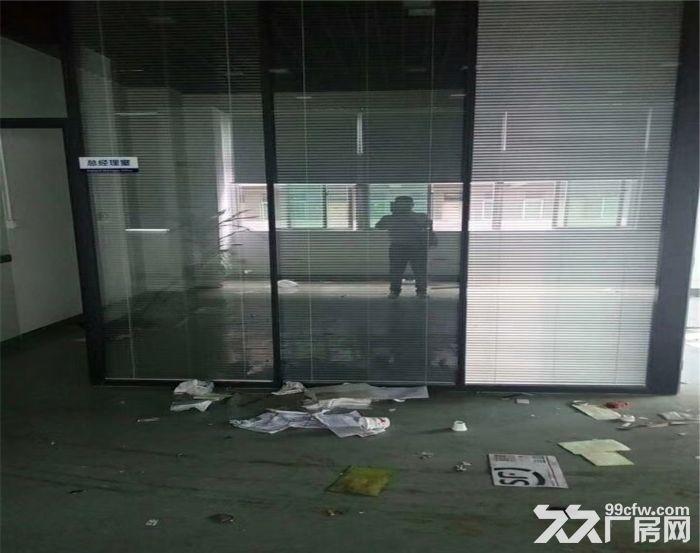 侨德高新科技园2960平米厂房出租-图(5)