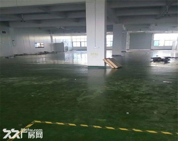 侨德高新科技园2960平米厂房出租-图(6)