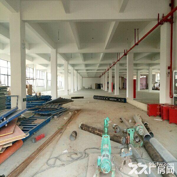 苏虹路2500平米一楼厂房出租-图(2)