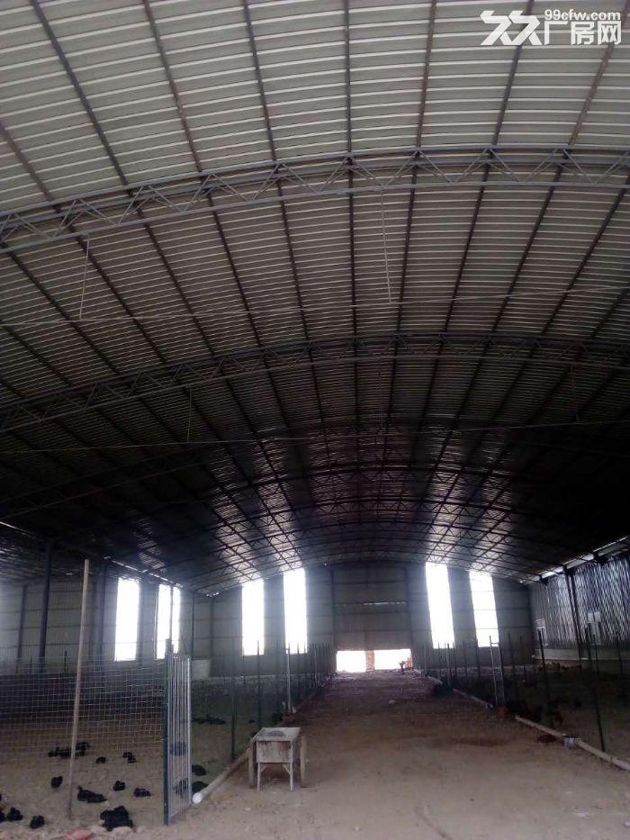 1200平方钢构厂房出租(有手续)-图(1)