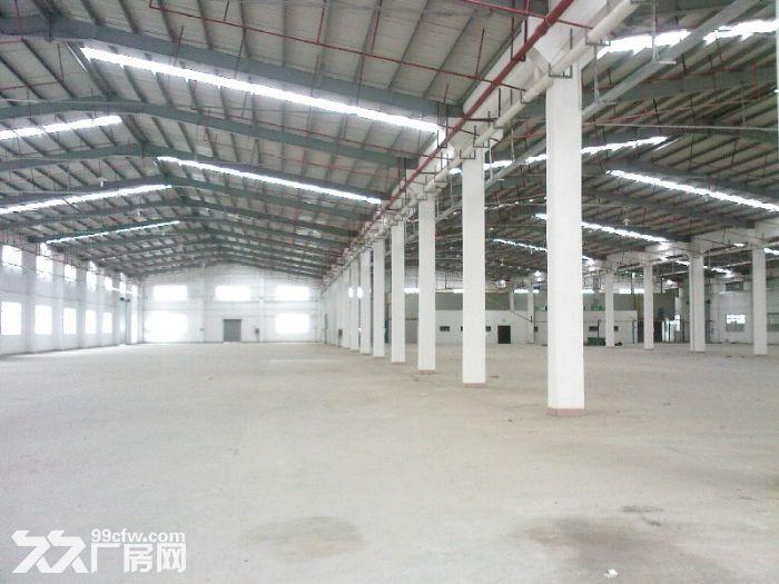 东莞市麻涌新出7000平方钢构单一层厂房出租-图(2)