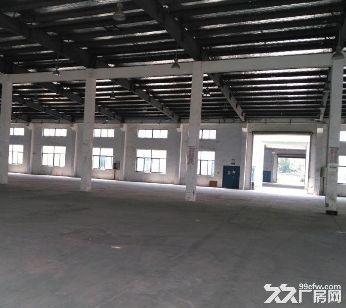 吴江开发区3500平米至7000平米层高10米-图(5)