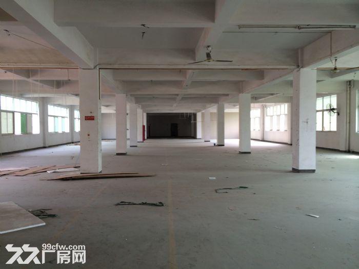 泽雅标准厂房1500平方一个层面出租适合各行各业-图(1)