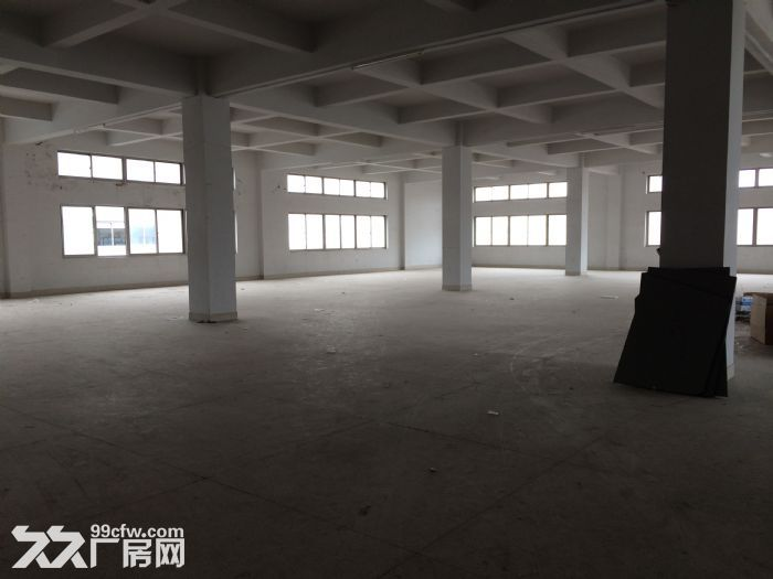 泽雅标准厂房1500平方一个层面出租适合各行各业-图(2)