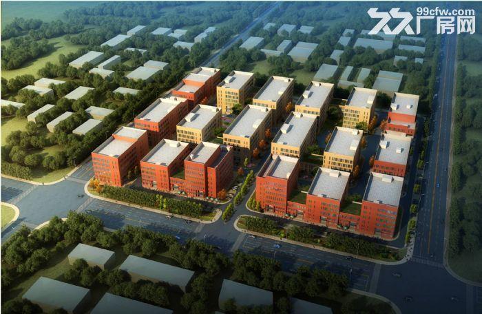 厂房出租,可环评生产注册,50年大产权,正规工业园区-图(7)