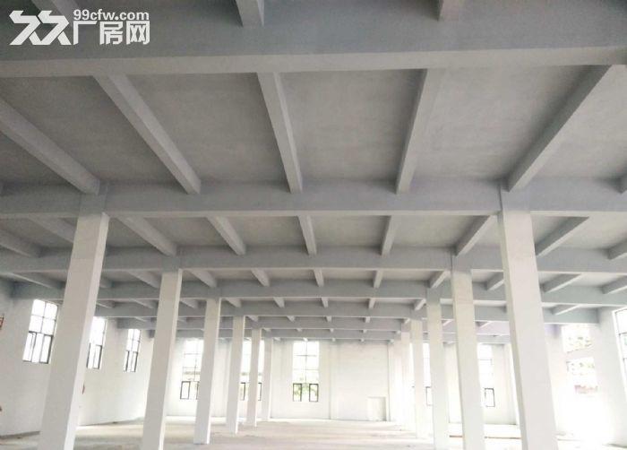 广州增城仓库2000平米出租丨交通方便,停车位充足-图(1)