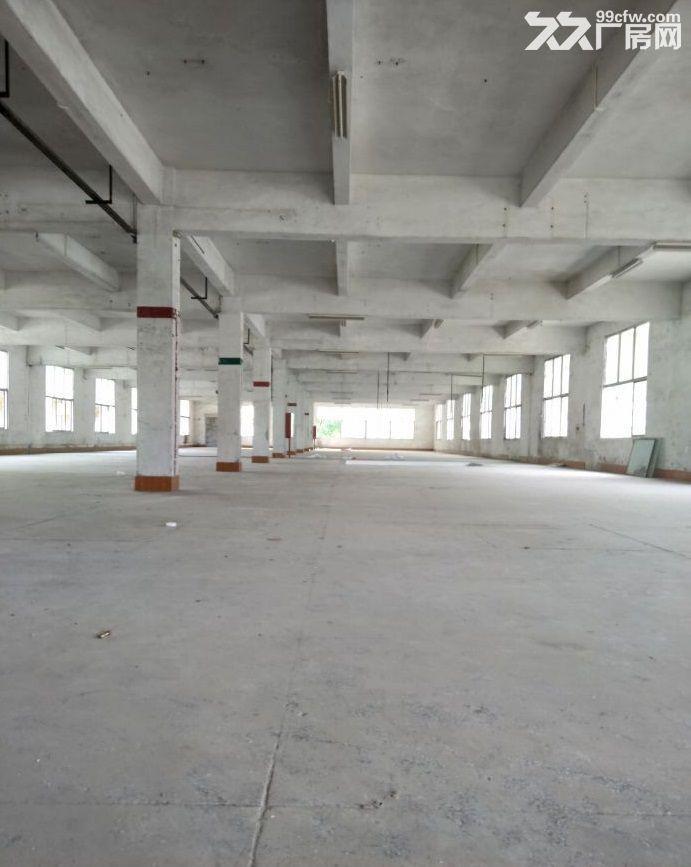 广州增城仓库2000平米出租丨交通方便,停车位充足-图(2)