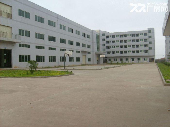 寮步独院标准厂房6000,宿舍2000平方招租-图(1)