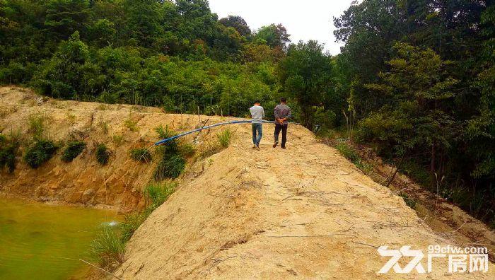 从化区良口锦村中心村291亩山地果园鱼塘转让-图(3)