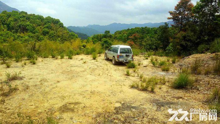 从化区良口锦村中心村291亩山地果园鱼塘转让-图(4)
