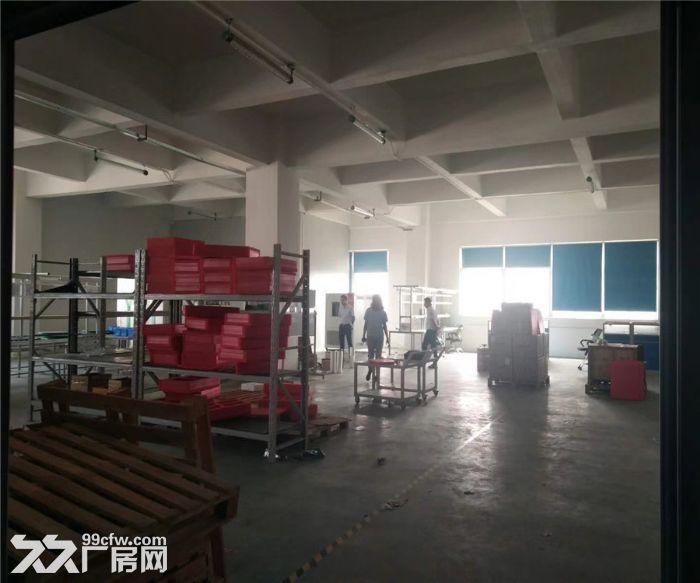 松岗浦京半导体产业园1480平米带装修厂房出租-图(5)