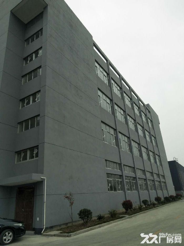 全新房子整层自由分割,园内有食堂公寓,门口就是公交-图(4)