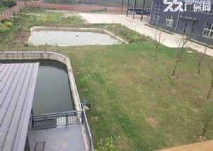 德阳广汉正规厂房土地出售