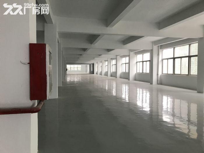 出租新区旺庄长江路周边3900平独栋厂房-图(1)