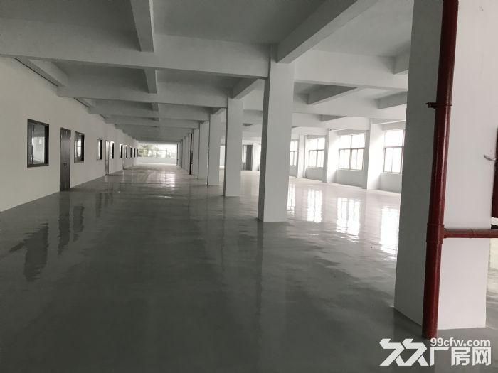 出租新区旺庄长江路周边3900平独栋厂房-图(3)